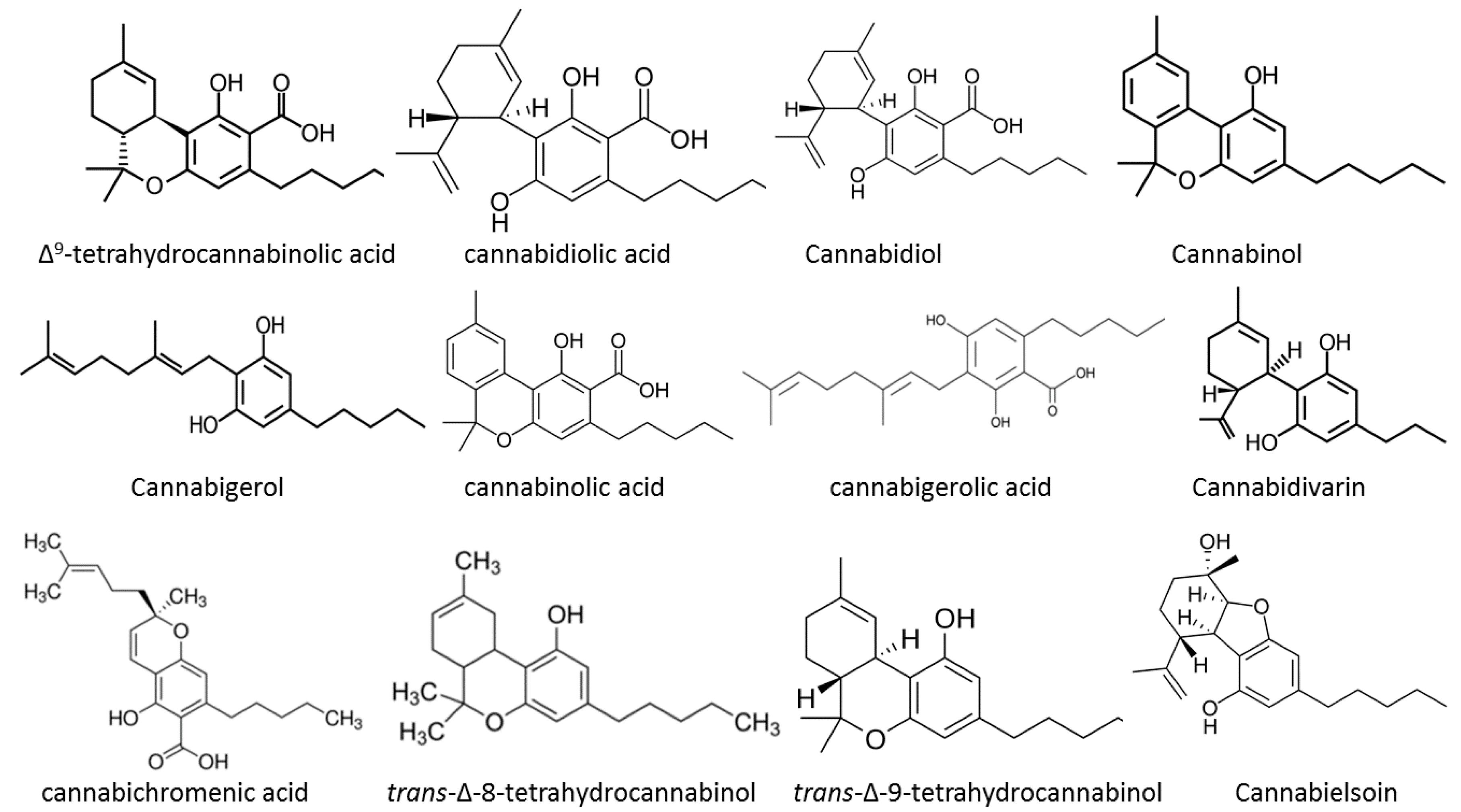 cbdv and cbgv cannabis
